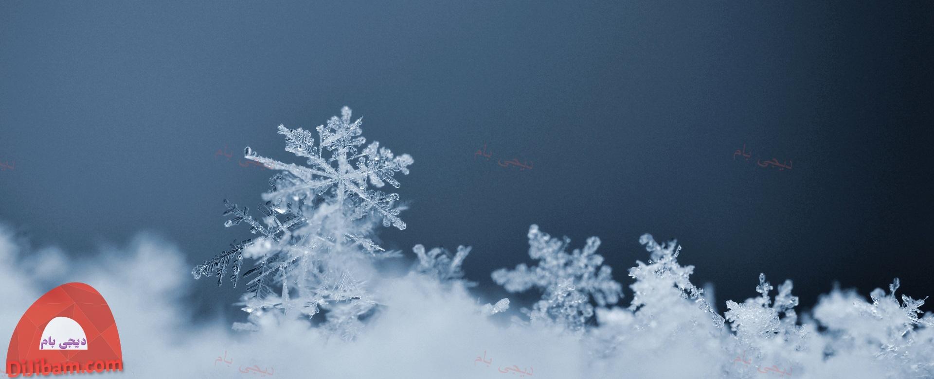 ایزوگام مخصوص مناطق سردسیر